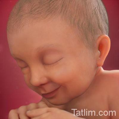 37 haftalık bebek görüntüsü